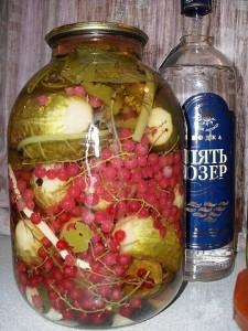 Огурцы соленые с красной смородиной в водке