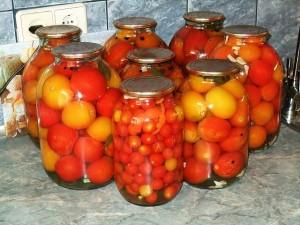 Мои помидорчики
